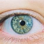 Адаптачия глаз