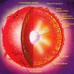 Структура Солнца